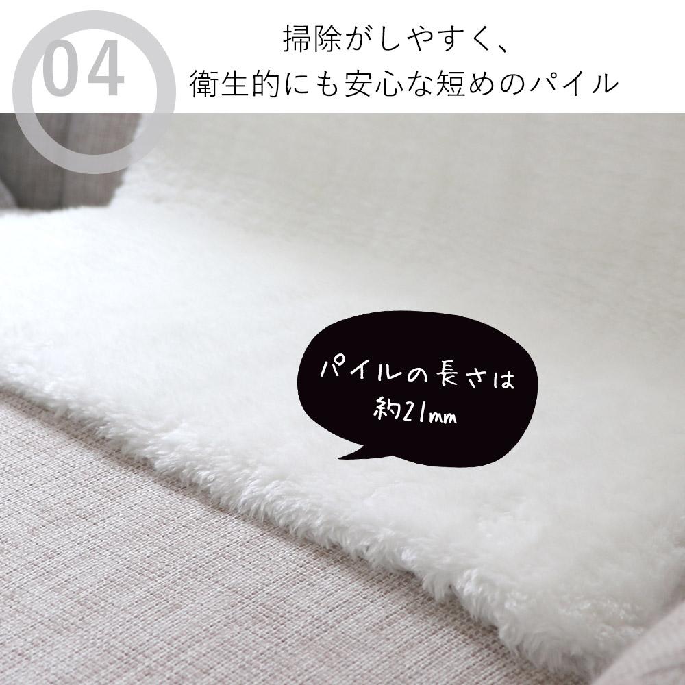 今大人気のローパイル(短い毛足)は、掃除がしやすいので衛生的にもGOOD。