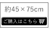 約45×75cm