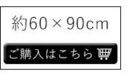 約60×90cm