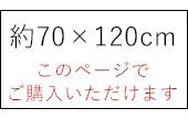 約70×120cm