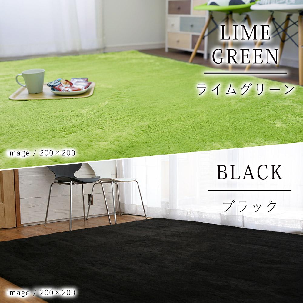 ライムグリーン/ブラック