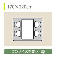 約170×220cm