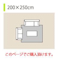 約200×250cm
