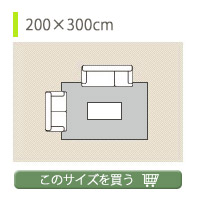 約200×300cm
