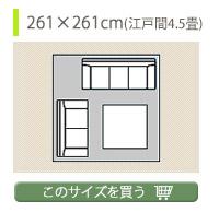 約261×261cm(江戸間4.5畳)